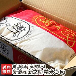 【定期購入】新潟産 新之助 精米5kg 袖山商店 米屋の蔵出し米【新潟産しんのすけ/白米】【送料無料】
