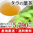 無農薬 タラの葉茶 タラ茶 20パック×3箱 カフェインフリーお茶【注目成分サポニン】【送料無料】
