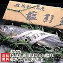 村上名産 塩引き鮭「まるごと1本」中サイズ ※仕上り約1.8kg (3枚卸切り身対応可)小針水産【村上鮭/塩引鮭/秋鮭/サ…