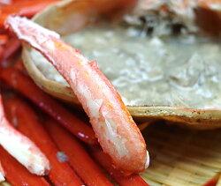 濃厚な旨味!日本海鮮魚センターの「ゆで紅ズワイガニ」3尾(約1.5kg)【鮮魚を閉じ込めた急速冷凍】【蟹/かに/ずわいがに】【ギフト・贈り物・内祝いに!のし(熨斗)無料】【送料無料】