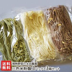 新潟コシヒカリと季節の野菜を使った三色米粉麺(3箱セット)【グルテンフリー】【米粉パスタ】【古代米】 【送料無料】
