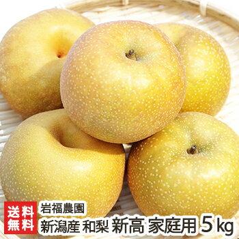新潟産 岩福農園の日本梨 家庭用 新高 5kg(5〜9玉)【新高梨】【10月上旬頃から順次発送】【送料無料】
