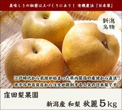 新潟産窪田果樹園の日本梨幸水3kg(6〜9玉)【8月中旬頃から順次発送】【のし(熨斗)包装無料】【送料無料】