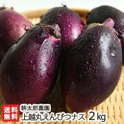 新潟産上越丸えんぴつナス2kg(10個入)耕太郎農園【茄子/なす/野菜/鮮度抜群/新鮮/採れたて/焼いても、揚げても、煮ても美味しい絶品のナス】【送料無料】