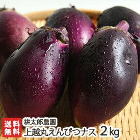 新潟産 上越丸えんぴつナス 2kg(10個入)耕太郎農園【茄子/なす/野菜/鮮度抜群/新鮮/採れたて/焼いても、揚げても、煮ても美味しい絶品のナス】【送料無料】