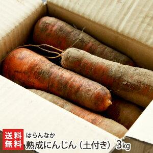 熟成にんじん(土付き)3kg はらんなか【完全無農薬栽培!】【土付き/雪熟成にんじん】【送料無料】