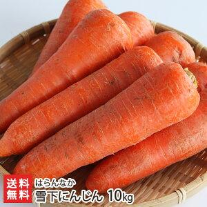 雪下にんじん 10kg はらんなか【完全無農薬栽培!】【雪下にんじん/津南産】【送料無料】