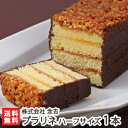 新潟引き菓子大定番!念吉のプラリネ ハーフサイズ 1本入【甘いチョコレートとスポンジにカリカリで香ばしいアーモン…