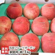 新潟産桃贈答用2kg(6〜8玉)石田フルーツガーデン【もも/モモ/フルーツ】【送料無料】