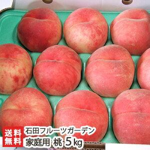 新潟産 桃 家庭用 5kg(13〜18玉)石田フルーツガーデン【訳あり】【もも/モモ/フルーツ】【送料無料】