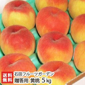 新潟産 黄桃 贈答用 5kg(13〜18玉)石田フルーツガーデン【もも/モモ/フルーツ/果物】【送料無料】