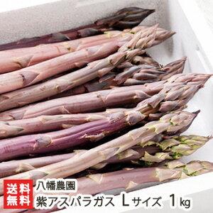 新潟産 紫アスパラガス Lサイズ(1本あたり30g〜40g)1kg 八幡農園【野菜/採れたて/太いアスパラガス/冷蔵便】【送料無料】