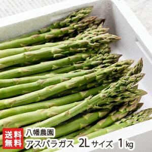 新潟産 グリーンアスパラガス 2Lサイズ(1本あたり50g〜60g)1kg 八幡農園【野菜/採れたて/太いアスパラガス/冷蔵便】【送料無料】