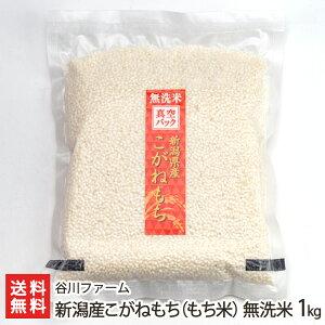 無洗米 もち米 こがねもち 1kg 谷川ファーム 新潟県産 産地直送 送料無料【新潟直送計画 うるち米 お取り寄せ】