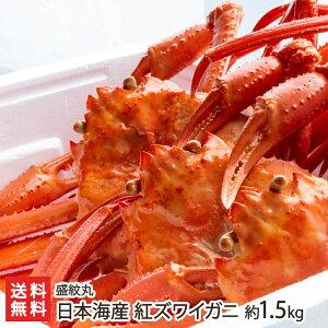 日本海産 紅ズワイガニ 約1.5kg(2〜4匹入り)盛紋丸【ベニズワイガニ/カニ/蟹】【送料無料】