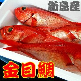 伊豆諸島 新島 近海 地金目 キンメダイ 1匹(1キロ〜1.2キロ)