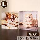 ペット 位牌 【ペット仏具】 写真をモニュメントに メモリアルキューブL アクリル透明 カラー クリスタル のような …