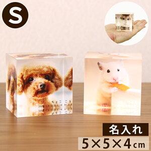 ペット位牌 ペット仏具 写真をモニュメントに・・『メモリアルキューブS』アクリル透明 カラー クリスタル のような 位牌 ペット仏壇 ペット 仏壇 きれい かわいい 写真立 フォトフレーム