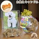 【ペット お供え】わんちゃんへのお供えに ドッグビスケットキャンドルかわいい 犬 短い ペット 供養 ペット仏具…