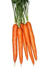 丸種 オレンジハーモニー ネオコート種子 約10,000粒(にんじん・ニンジン) 【宅配便対応】【お取り寄せ商品】
