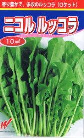 渡辺農事 ニコル ルッコラ 10ml 【郵送対応】
