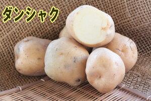 【種ジャガイモ・種いも】「ダンシャク(男爵)」の種じゃがいも 約500g入【春ジャガイモ用12月上旬〜2月下旬発送】