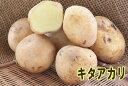 【種ジャガイモ・種いも】きたあかり(キタアカリ) 1kg位入