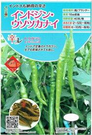 トキタ種苗 トウガラシ 「インドジン・ウソツカナイ」のタネ 約20粒