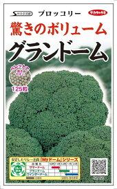 サカタのタネ ブロッコリー「グランド−ム」のタネ ペレット種子約125粒