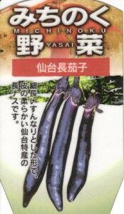 みちのく野菜苗「仙台長なす」【2本セット】〜4月下旬発送分予約〜