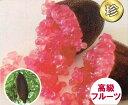 フィンガーライム(赤・ピンク系) 13.5cmポット苗(地上部約50cm)【3月上旬発送】