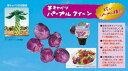 芽キャベツ パープルクイーン 9cmポット苗2本セット【8月下旬出荷】