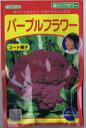 武蔵野種苗 紫カリフラワー・パープルフラワー コート種子約35粒 【郵送対応】