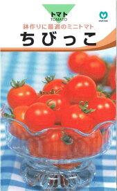 丸種 ミニトマト ちびっこ 1ml【郵送対応】