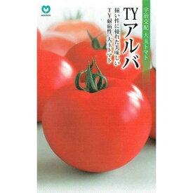丸種 トマト TYアルバ 約7粒【郵送対応】