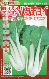 トキタ種苗 ウィンウィンチョイ 3ml【郵送対応】