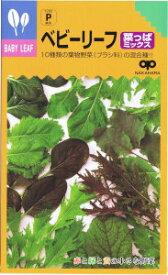 中原採種場 ベビーリーフ・菜っぱミックス 20ml 【郵送対応】