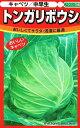 ノウリン交配 キャベツ トンガリボウシ ペレット種子 約100粒 【郵送対応】