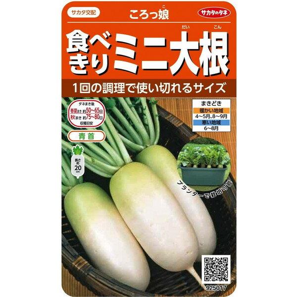 サカタのタネ 食べきりミニ大根 ころっ娘 5ml【郵送対応】