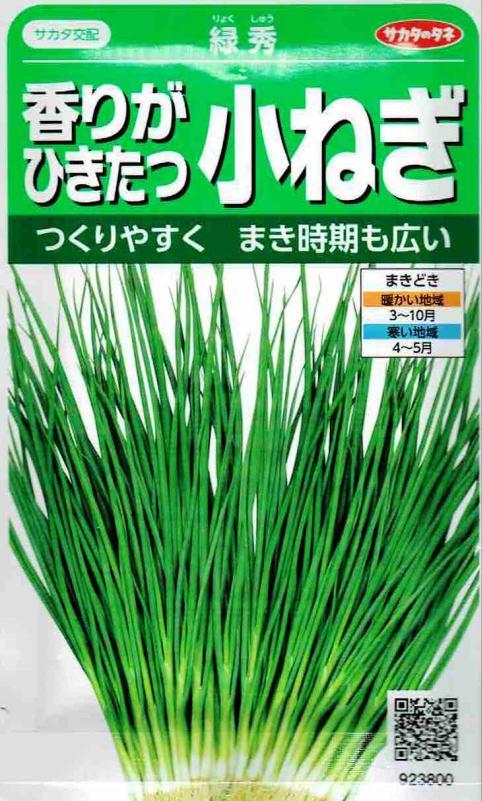 サカタのタネ 香りがひきたつ小ねぎ 緑秀 15ml【郵送対応】