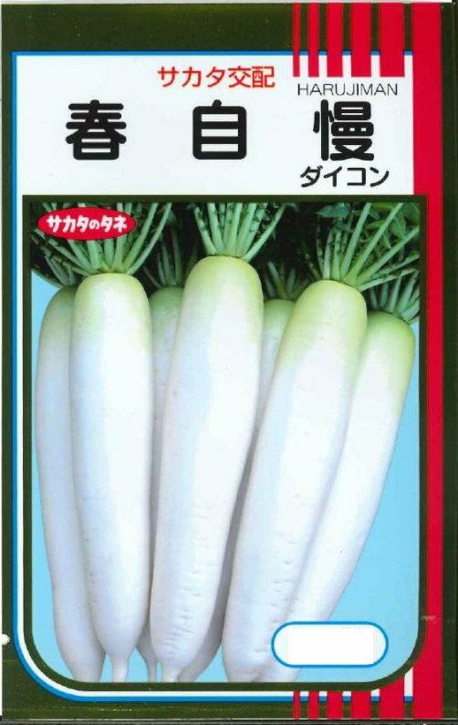 サカタのタネ ダイコン 春自慢 約800粒【郵送対応】