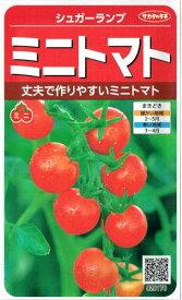 サカタのタネ ミニトマト シュガーランプ 0.7ml【郵送対応】