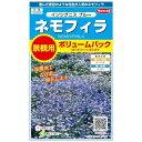 サカタのタネ ネモフィラ インシグニスブルー 景観用ボリュームパック 2g(約3平米分) 【郵送対応】