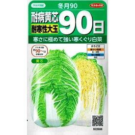 サカタのタネ 耐病黄芯白菜 冬月90 0.9ml 【郵送対応】