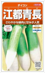 サカタのタネ 江都青長大根 10ml【郵送対応】