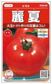 サカタのタネ トマト サカタのタネ トマト 麗夏 約21粒【郵送対応】