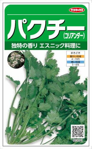 サカタのタネ 香草 パクチー 6ml【郵送対応】