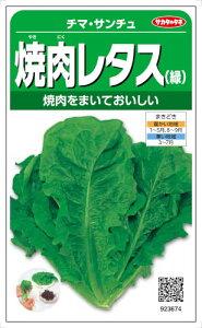 サカタのタネ レタス 焼肉レタス 2.5ml【郵送対応】