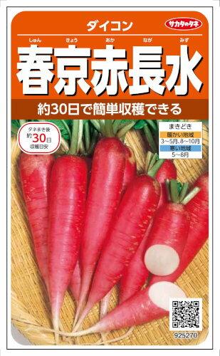 サカタのタネ ダイコン 春京赤長水 10ml【郵送対応】