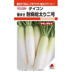 タキイ種苗 ダイコン 春まき耐病総太り二号 4ml【郵送対応】
